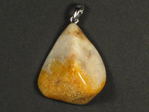 Anhänger fossile Koralle mit Silberöse 2,7x2,3cm