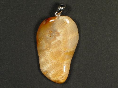 Anhänger fossile Koralle mit Silberöse 3,3x2,0cm