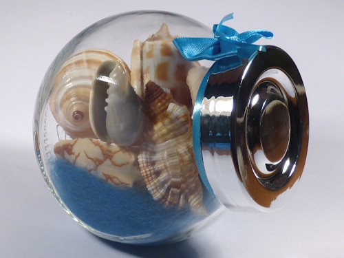 Shell mix in small candy glass 06