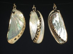 Shell pendant polished Haliotis asinina golden