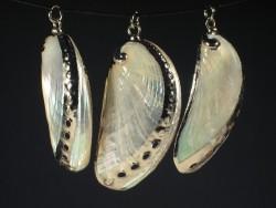 Shell pendant polished Haliotis asinina silvery