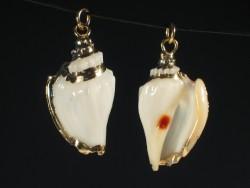 Shell pendant Strombus variablis golden