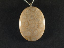 Necklace with fossil coral