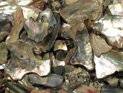 Midasohr-Stücke 1-5cm (20g)
