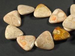 Fossile Koralle dreieckig m/Bohrung 2,5cm