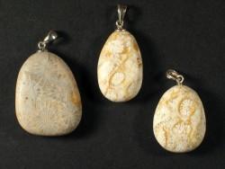 Anhänger mit fossiler Koralle mattiert 2,3+cm