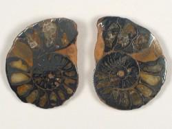 Hematite Ammonite Pair Jurassic MA