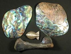 Paua-Stücke 6+cm (30g)