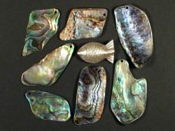 Paua-Stücke 2,5-4cm m/Bohrung (10g)