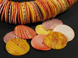 Colourful Scallop beads 2,5cm