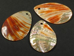 Red Abalone Tear Slice ~4cm w/hole