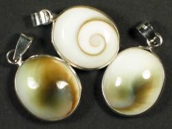Operculum-Anhänger oval m/Silber 1,6cm