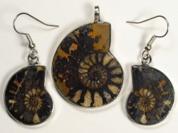 Ammonite pendant and earrings from Morocco 3,3/2,3cm