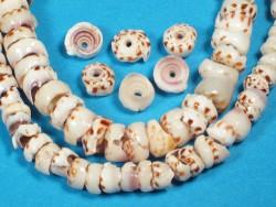 Puka-Shells 5+mm m/Bohrung auf Mini-Strang ~20cm