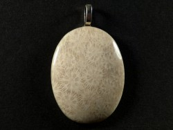 Pendant fossil coral polished oval 3,9x3,0cm
