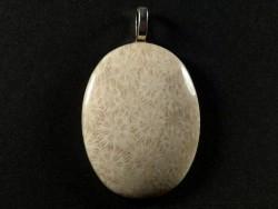 Anhänger fossile Koralle poliert oval 3,9x3,0cm