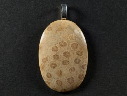 Pendant fossil coral polished oval 3,7x2,5cm