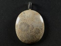 Anhänger fossile Koralle poliert oval 3,5x3,0cm