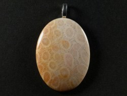 Pendant fossil coral polished oval 4,2x3,1cm