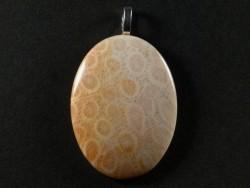 Anhänger fossile Koralle poliert oval 4,2x3,1cm
