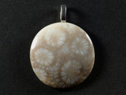 Pendant fossil coral polished round 3cm