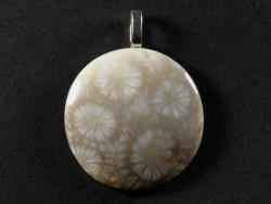 Anhänger fossile Koralle poliert rund 3cm