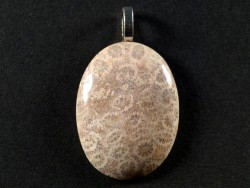 Anhänger fossile Koralle poliert oval 3,3x2,5cm