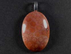 Pendant fossil coral polished oval 3,4x2,4cm