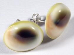 Operculum earring pair from Turbo reevei Ø1,5cm