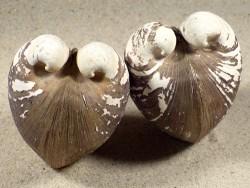 Glossus humanus IE 5,5+cm