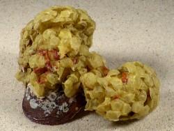 Eiballen von Buccinum undatum auf Arctica islandica DE 10,5cm