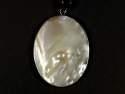 Freshwater shell pendant oval with pearl 4,5cm *unique*