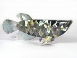 Nacre Arowana *silver-grey* ID 20cm